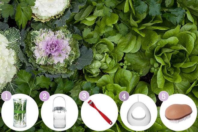 Spring-garden-and-outdoor-tools