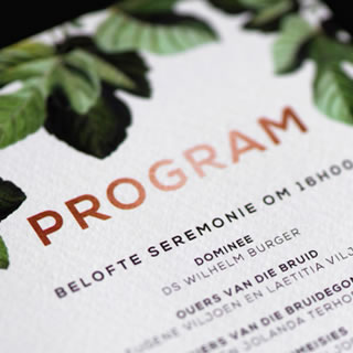Program Design by White Kite Studio