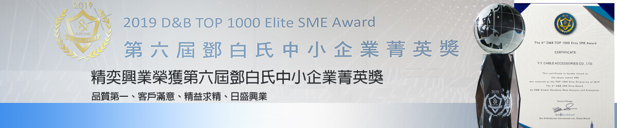 2019 D&B TOP 1000 Elite SME Award