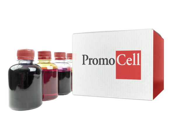 PromoCell Green-fluorescent Cytoplasmic Membrane Staining Kit SKU: PK-CA707-30021 package
