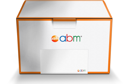Find Your cDNA Synthesis Sample Kit from ABM