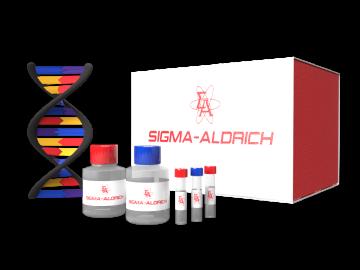 Aldrich® Spectral Viewer™ SKU : Z540161