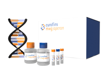 SimpleSeq DNA Sequencing Kits
