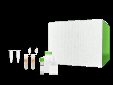 AbraMag™ Genomic DNA Magnetic Beads Kit SKU: 555020