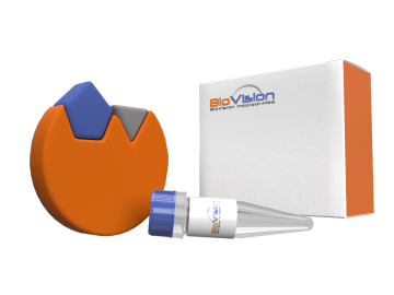 Laq™ DNA Polymerase, BioVision Inc., SKU: 9004-2500