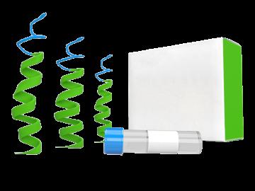 2-Aminobenzenesulfonamide SKU: T2187