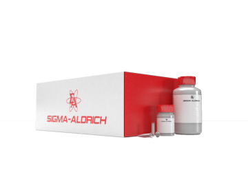 GenElute™ RNA/DNA/Protein Purification Plus Kit