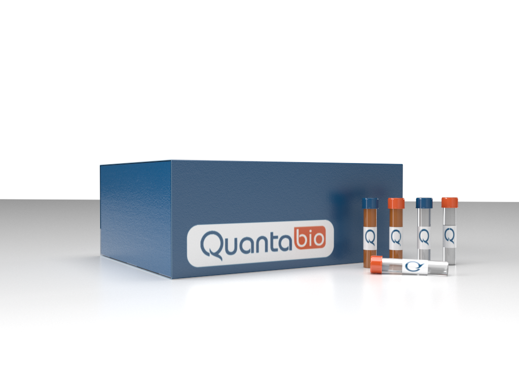 qScript XLT 1-Step RT-PCR Kit