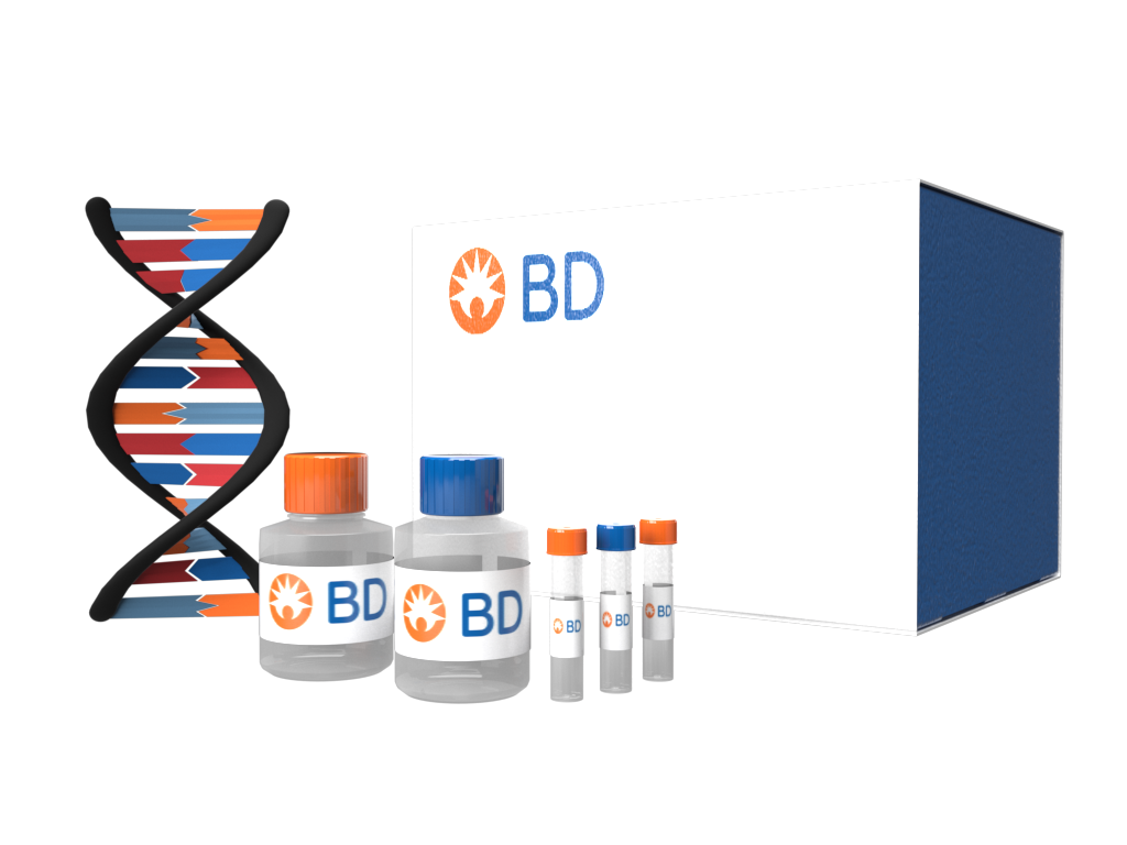 Cytometer Setup & Tracking Beads Kit use with BD FACSDiva™ software v 6.x RUO