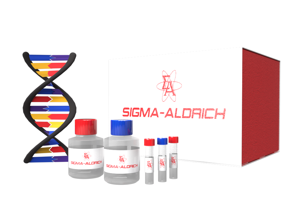SeqSaver™ Sequencing Premix Dilution Buffer for DNA sequencing