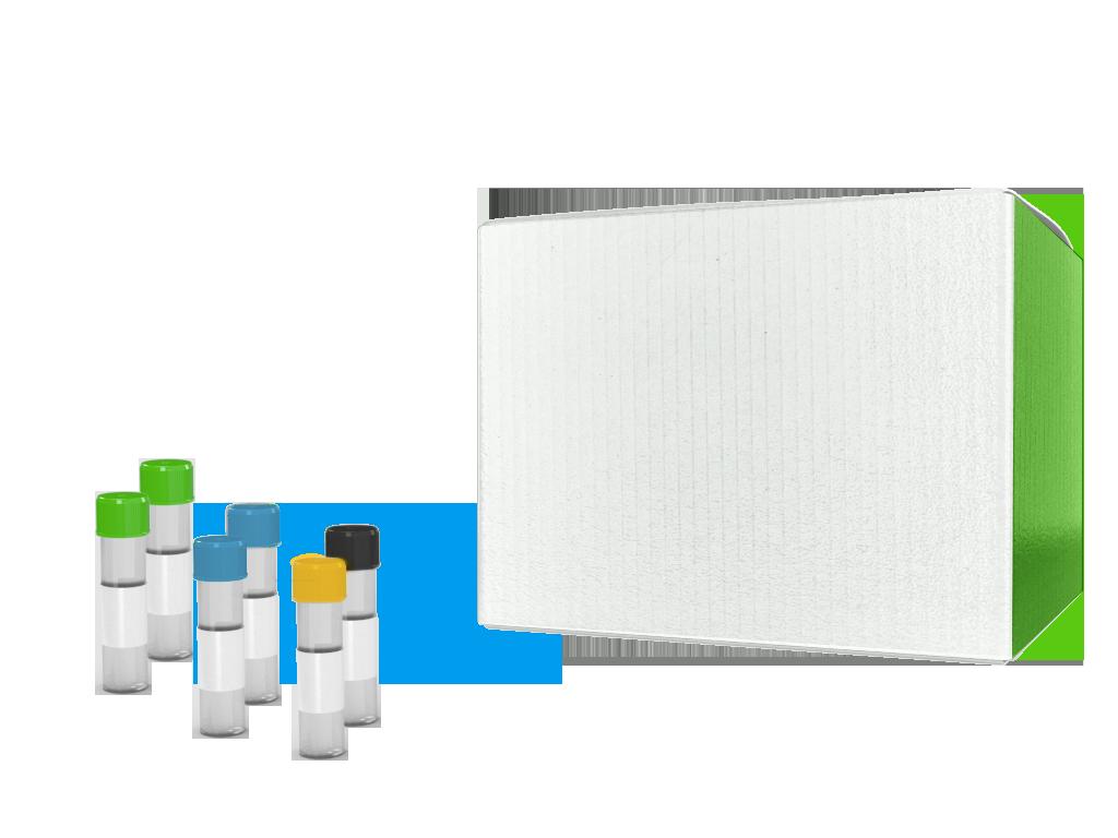 CloneEZ® PCR Cloning Kit