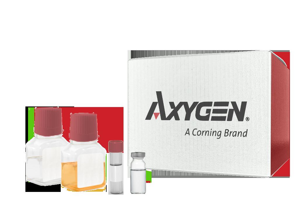 Axygen® 48 Well Clear V-Bottom 5mL Polypropylene Rectangular Well Deep Well Plate, 5 per Pack, Nonsterile SKU: P-5ML-48-C-S