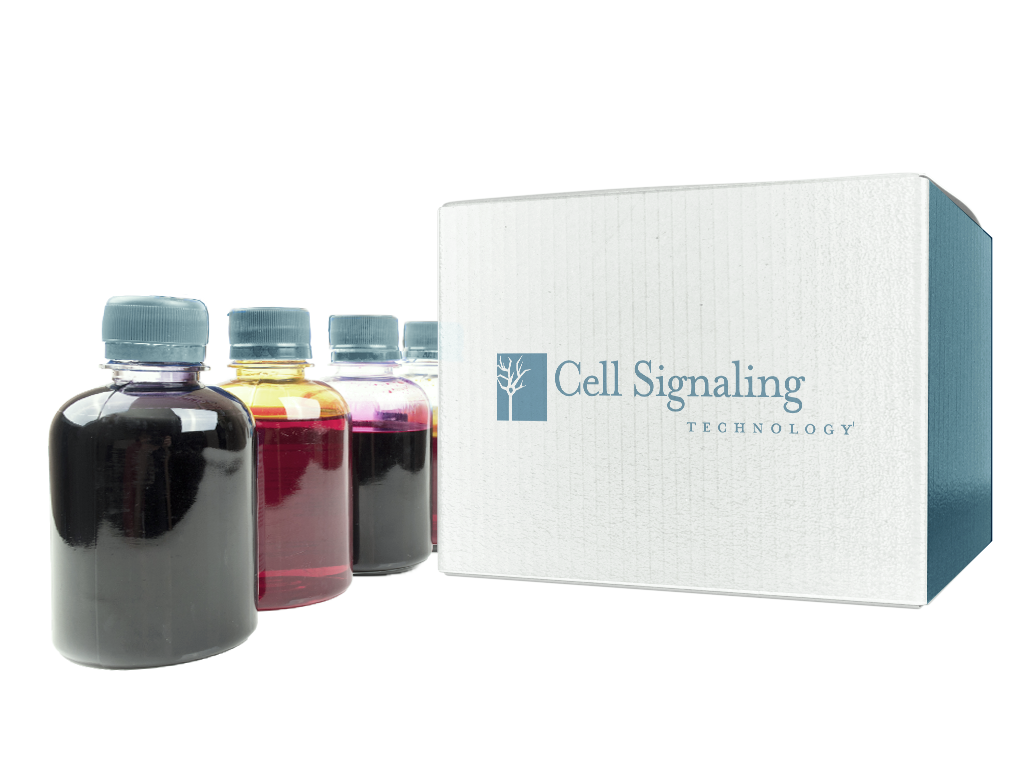 Ponceau S Staining Solution