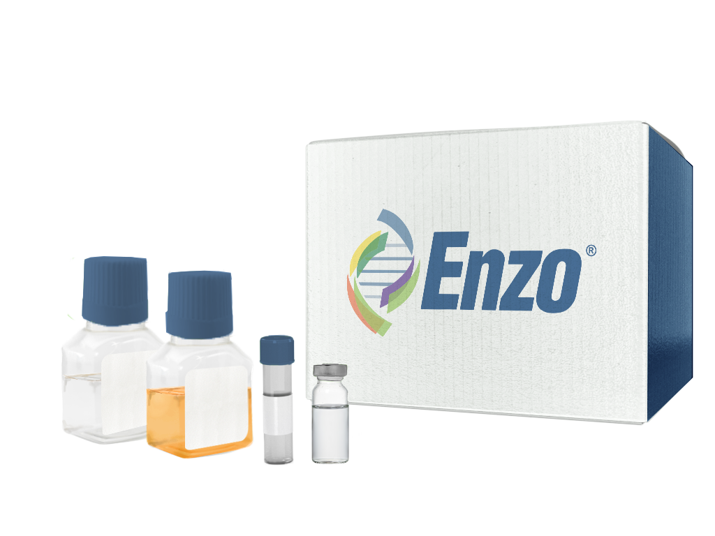Nerve growth factor 2.5S (mouse), (grade I), Enzo Life Sciences