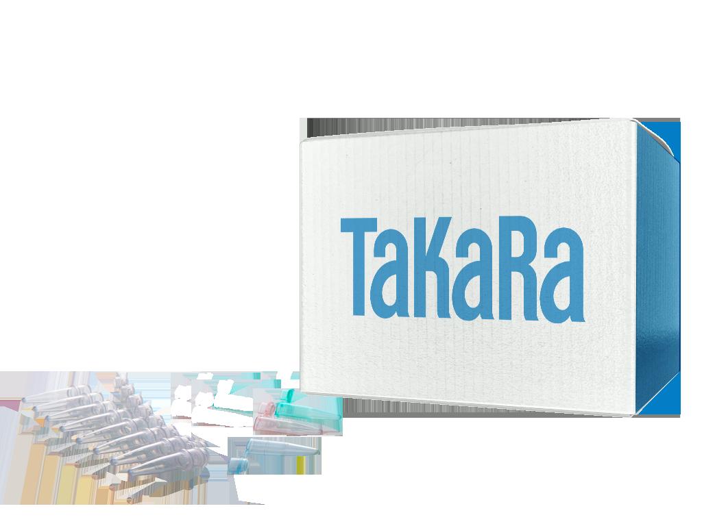 TaKaRa Micro Strip PCR Tube