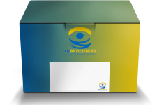 Find Your Gene Transfer Sample Kit from OZ Biosciences