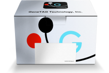 Find Your Gene Transfer Sample Kit from GeneTAG Technology