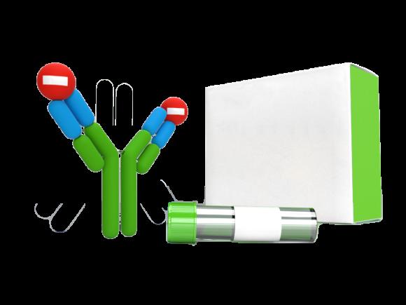 Dendritics Polyclonal Rat Isotype control IgM (Alexa 546)  SKU: DDXCR05A546 package