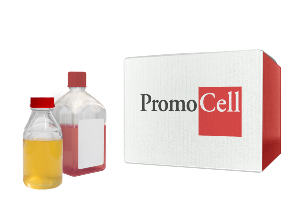 PromoCell Endothelial Cell Basal Medium 2 (prf) SKU: C-22216 package