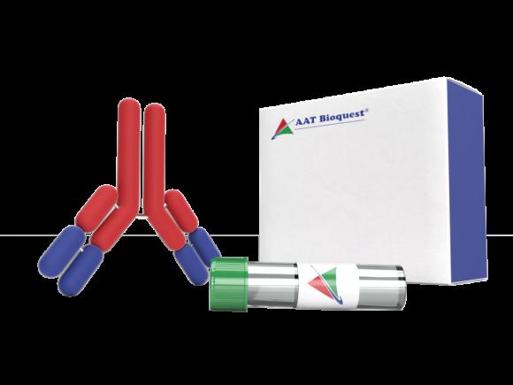 AAT Bioquest Anti-CBR3 package