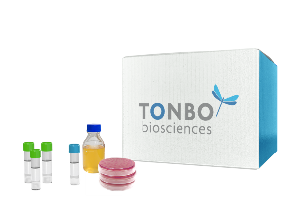 Tonbo Biosciences Vmax™ Express- Chemically Competent Cells package