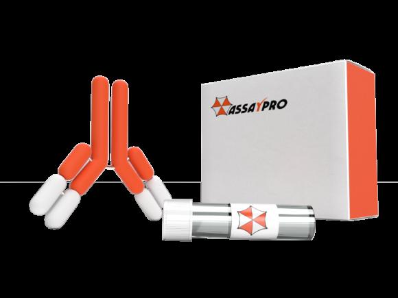 Assaypro Human CA8 Antibody - 35146-05121 package