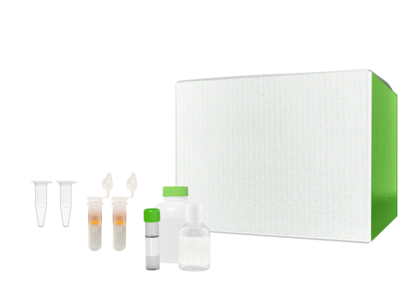 G-Biosciences GET™ CLEAN DNA package