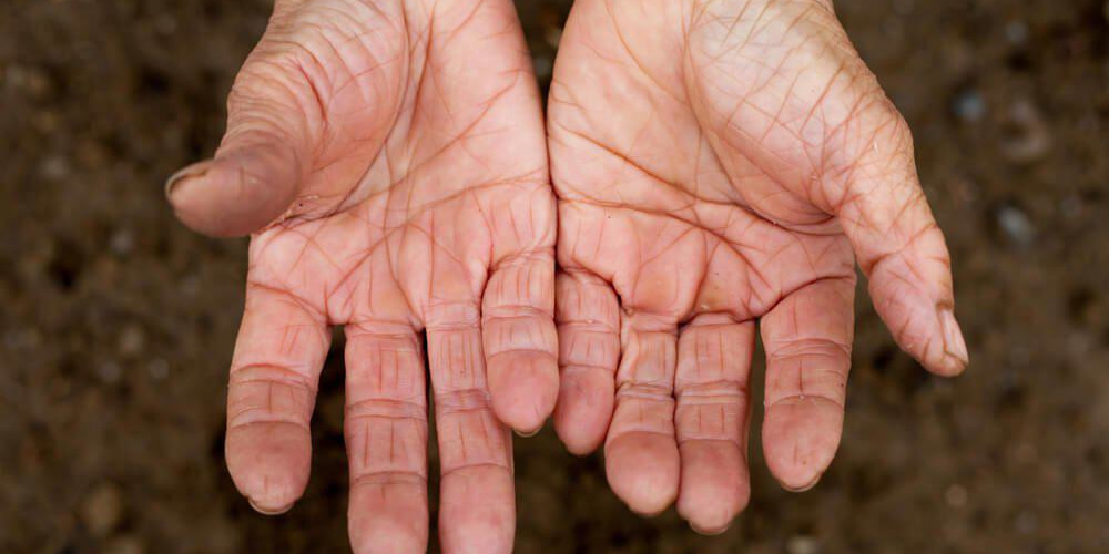 Aging Skin: Which Body Parts Show the First Signs? - ZALEA Article Banner