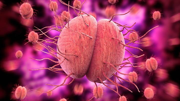 La gonorrhée : qu'est-ce que c'est ? | Zava