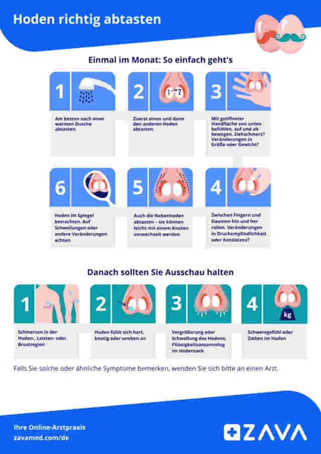 Hoden abtasten: Anleitung zur Krebsvorsorge