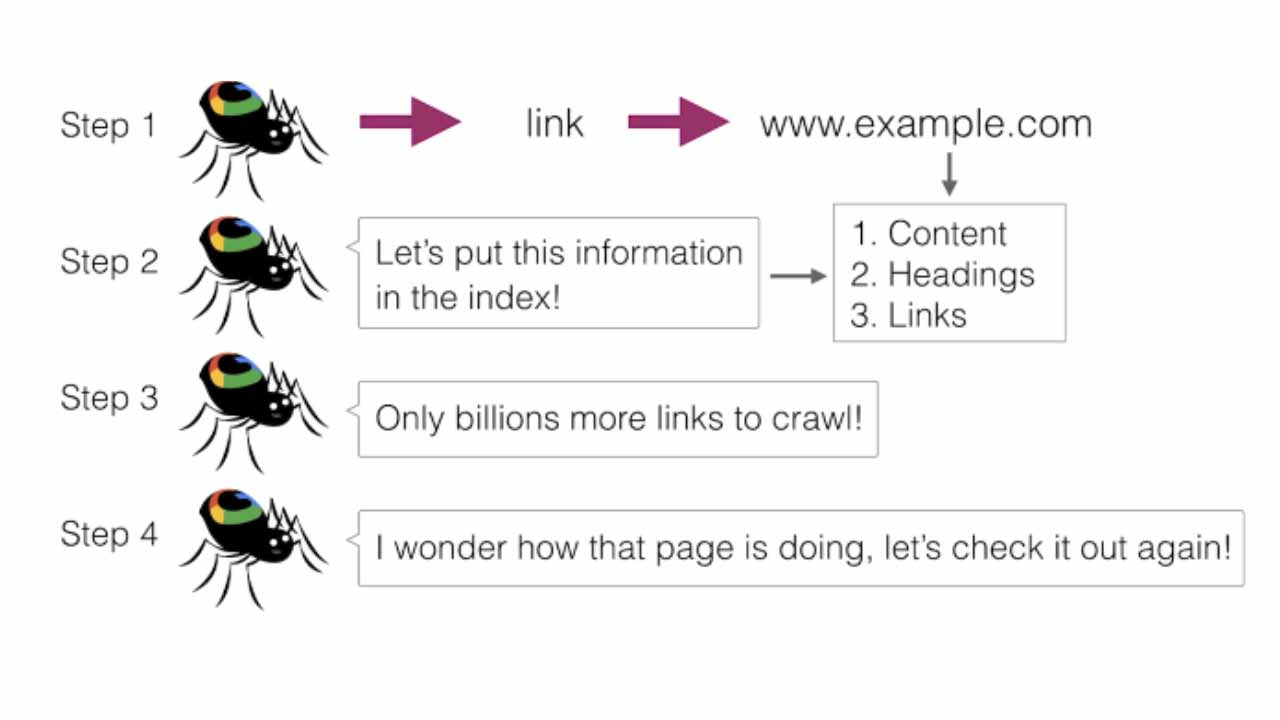 Four steps of web crawling