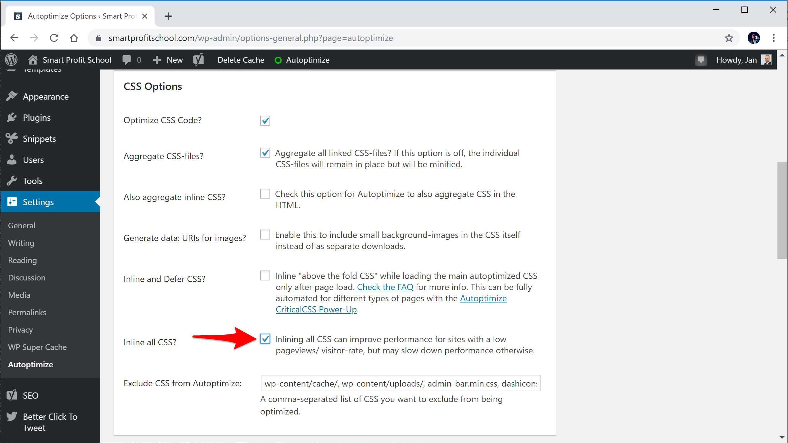 Autoptimize CSS settings