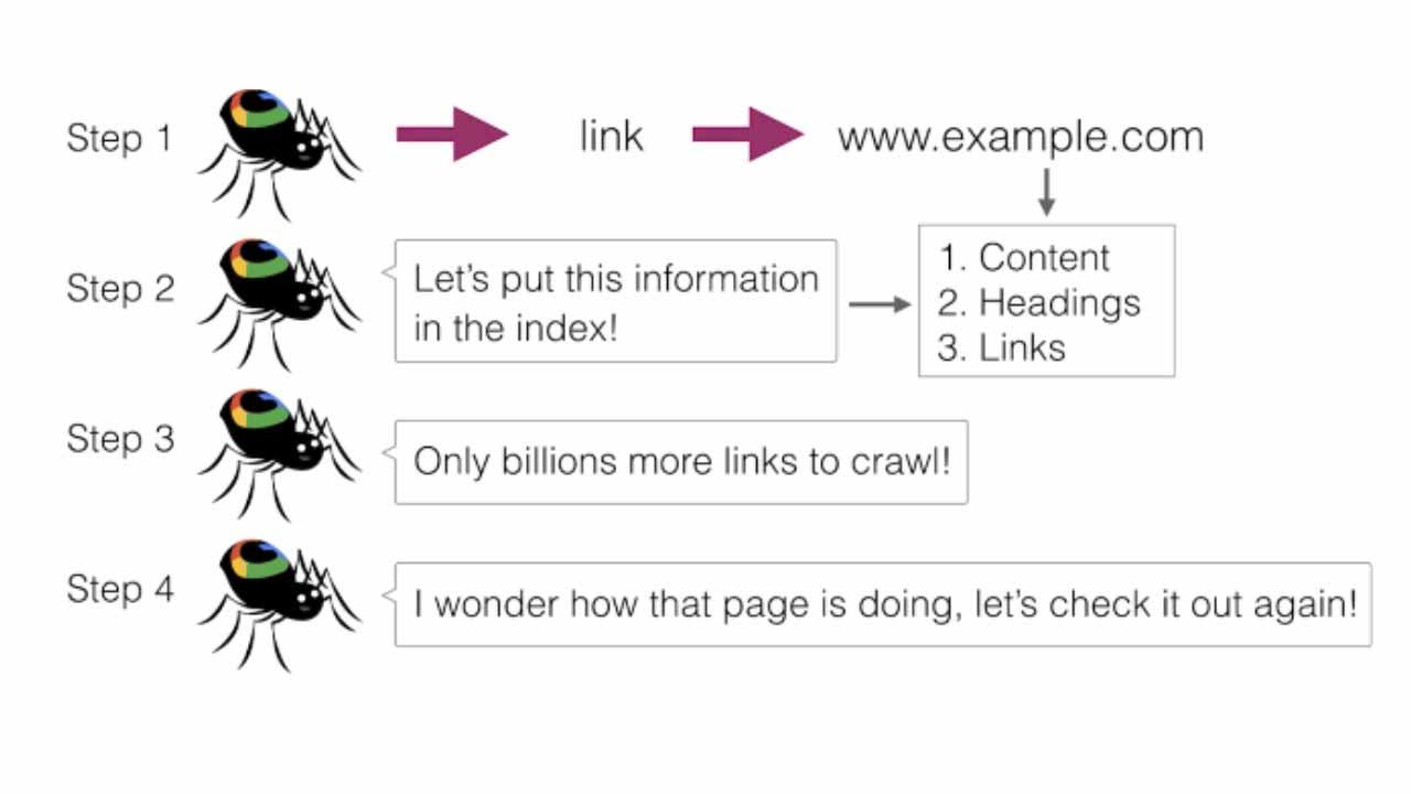 Four steps of web crawling