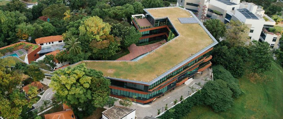 Dachbegrünung / begrünte Dächer