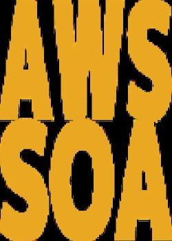 AWS SOA 対策参考本