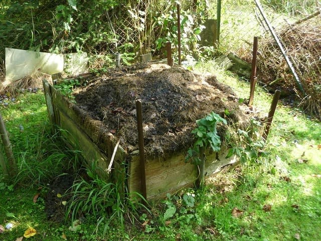 Can I make compost without worms