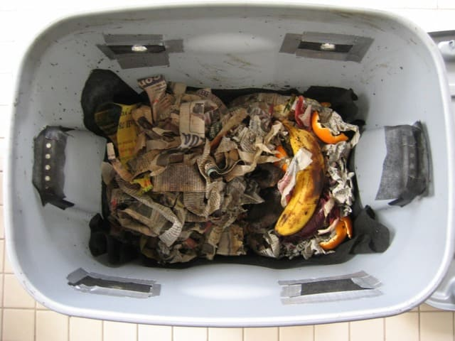 How to Stop Compost From Smelling: Easy Ways & Steps
