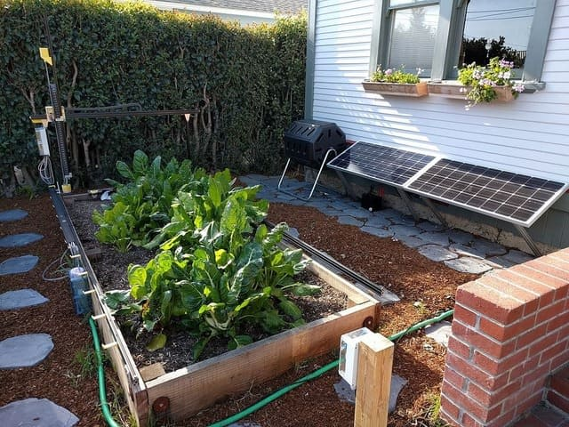 How to Make Your Black Soldier Fly Compost Bin Smell-Free