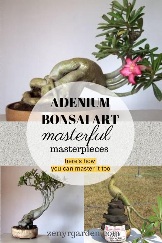 adenium-bonsai-art-sculpture-carving