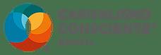 Instituto Capitalismo Consciente Brasil