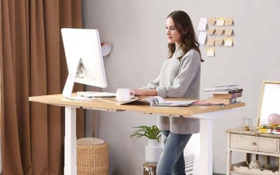 Flexispot Value Electric Height Adjustable Desk 2020 Review