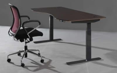 ApexDesk Flex Series Electric Standing Desk Review 2020