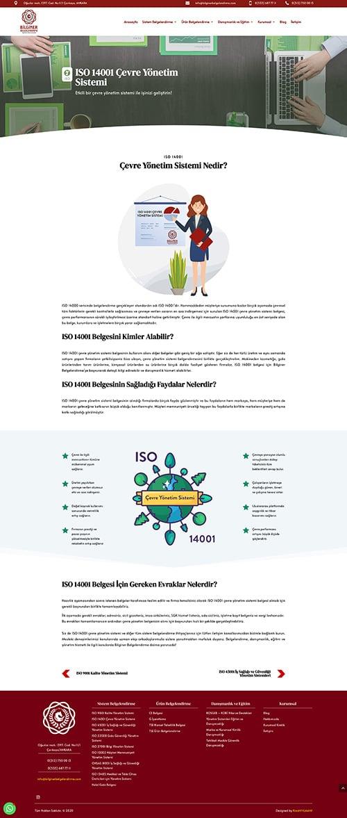 ankara web site tasarım firmaları