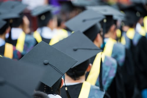 Higher institutes of education like universities are expected to see numbers of international students grow.