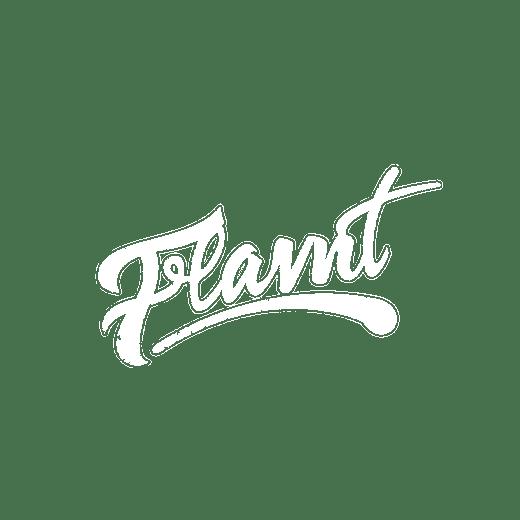 Flavnt