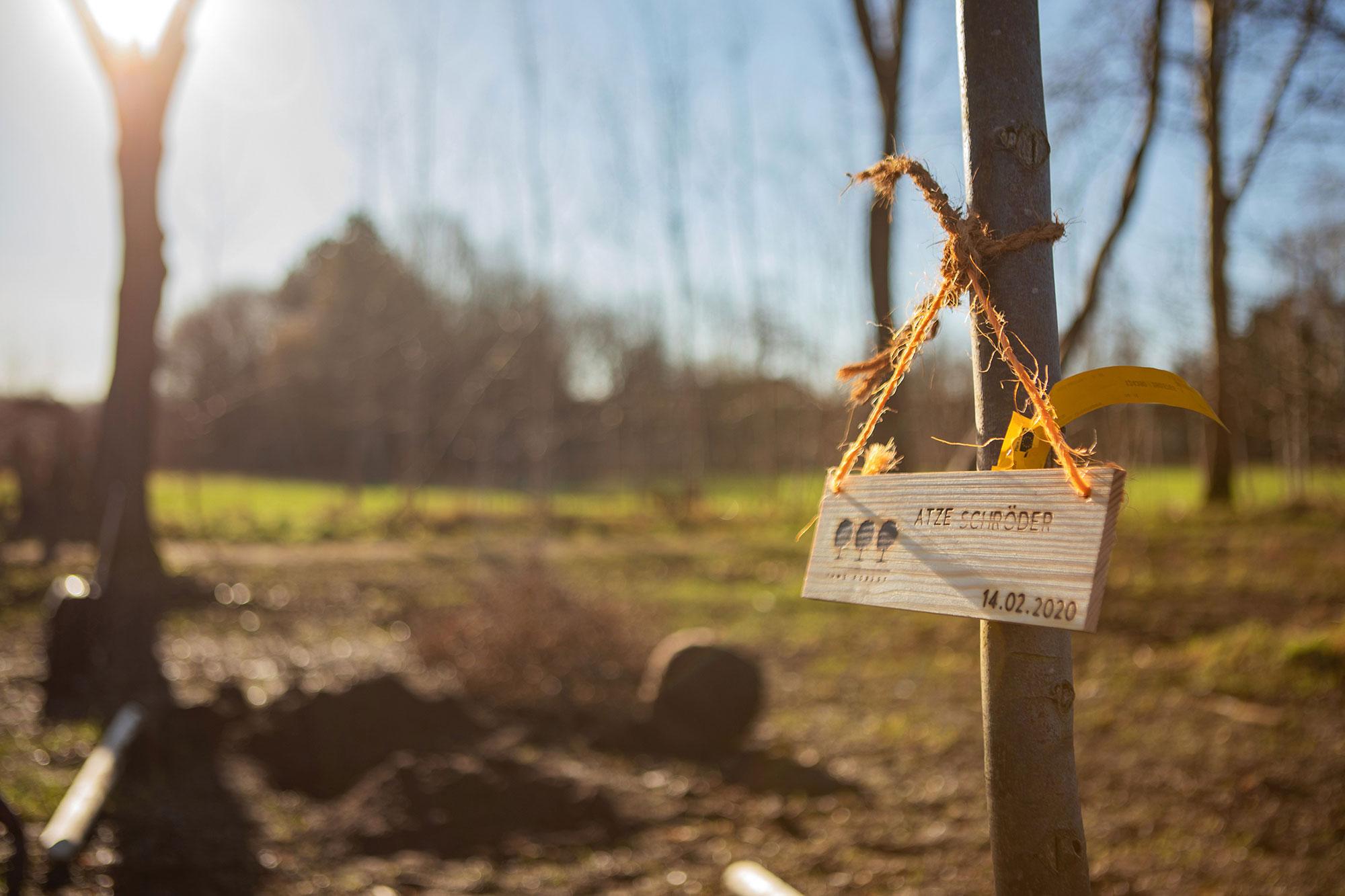 FAME FOREST - Atze Schröder @ Maren Martens