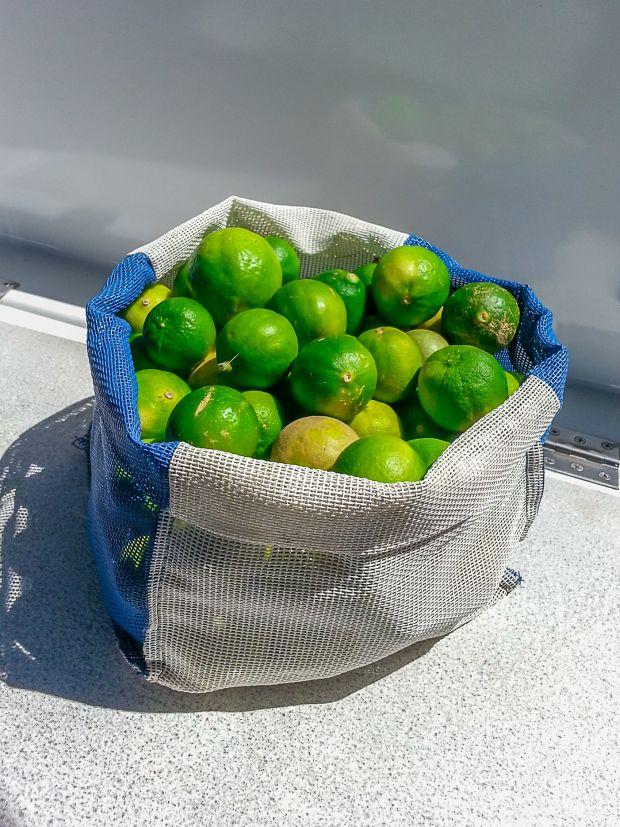 Fresh food onboard