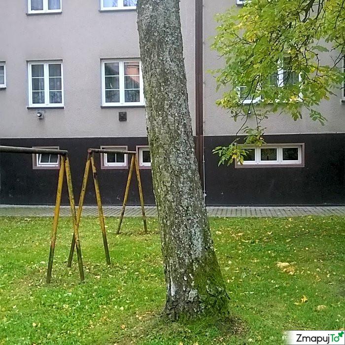 ZmapujTo.cz - hlášení číslo 143865, Závada na veřejné zeleni, Hrabová