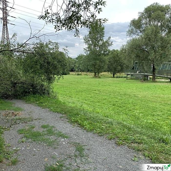 ZmapujTo.cz - hlášení číslo 185495, Závada na veřejné zeleni, Hrabová