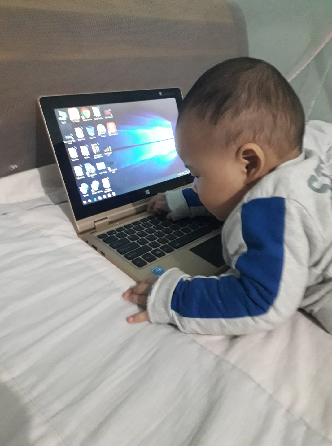 Baby Software Engineer